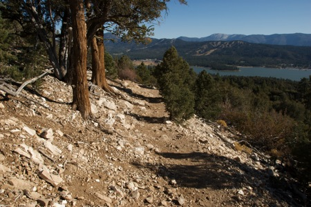 Cougar Crest Trail above Big Bear Lake