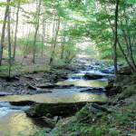 Seneca Creek Hike: West Virginia Looks Like West Virginia