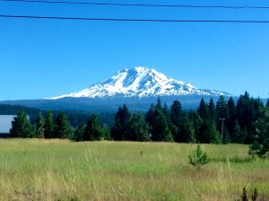 Mt. Adams from NF-23